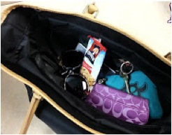 handbagwithsnack